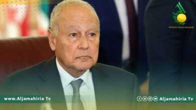 Photo of أبو الغيط: الجامعة العربية ارتكبت خطأ جسيما في ليبيا