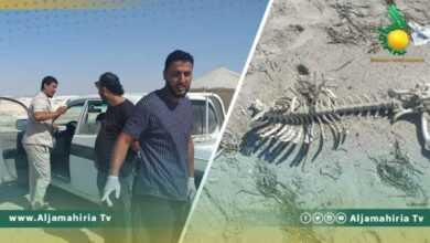 Photo of بعد 24 ساعة…العثور على جثة ثانية على شاطئ البحر غرب منطقة العقيلة
