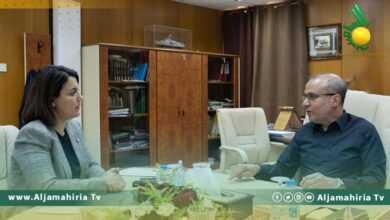 Photo of وزيرة الخارجية تلتقي عضو المجلس الرئاسي لبحث ملف المصالحة الوطنية