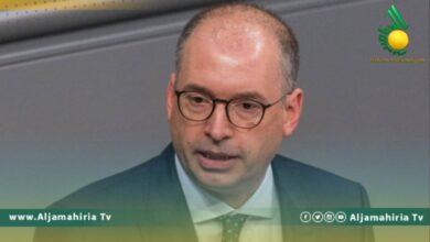وزير الدولة الالماني نيلز انين